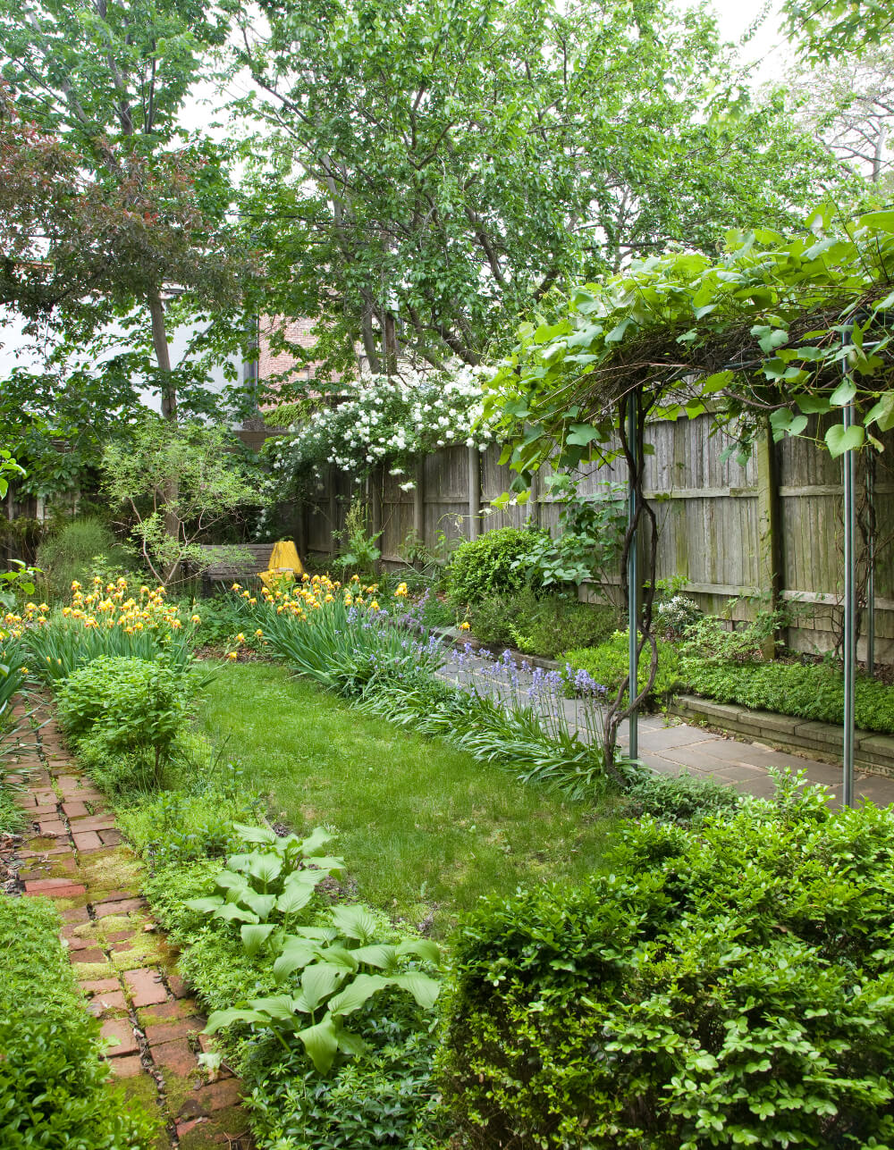 Prospect Heights row house garden