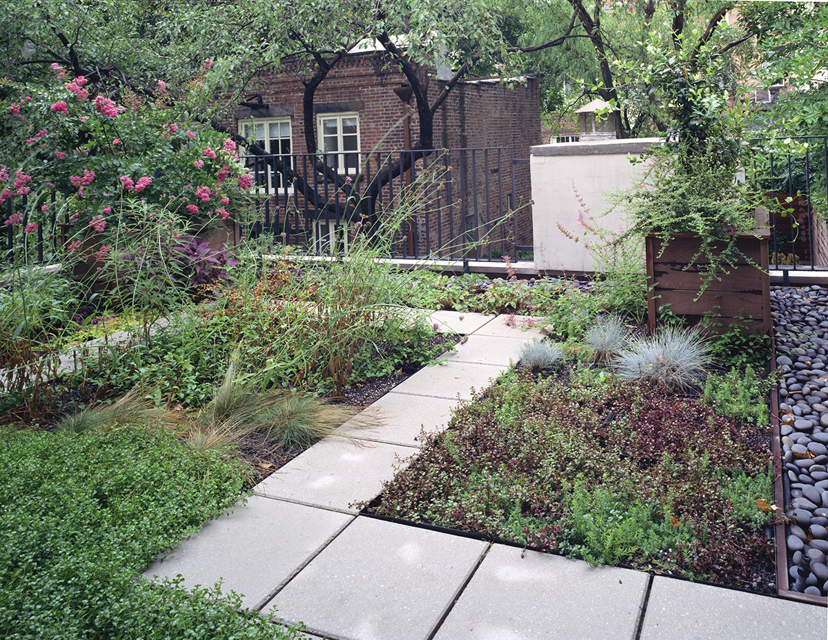 New York architects green roof