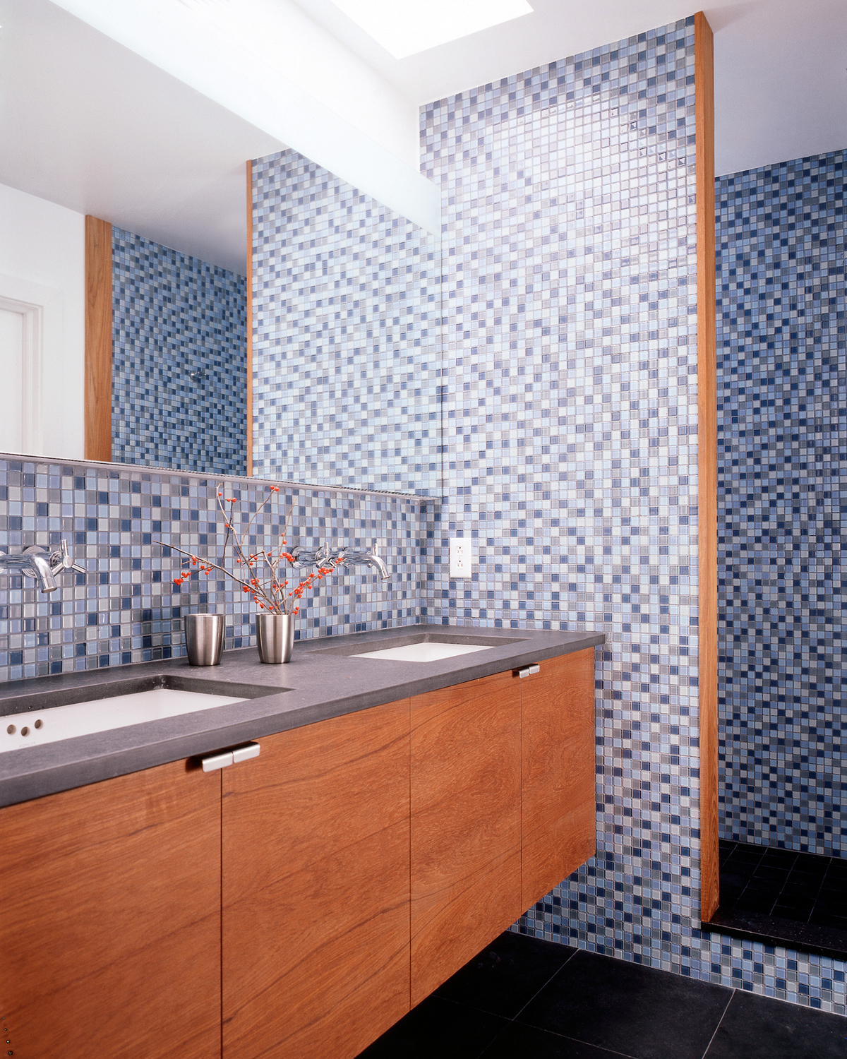 Park Slope row house segmented bathroom